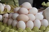 古镇的鸡蛋